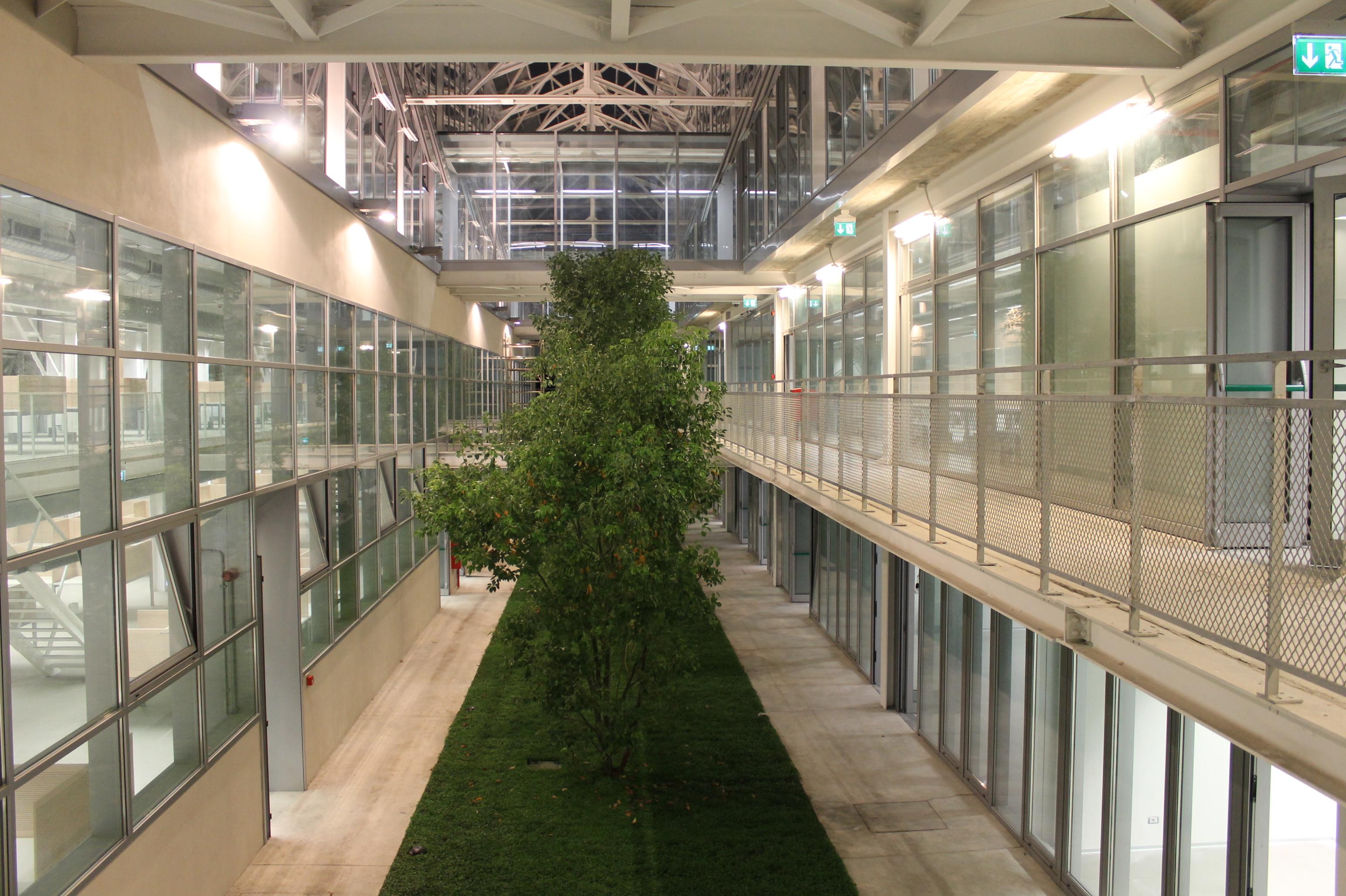 Architettura e natura recupero di un edificio industriale for Architettura natura